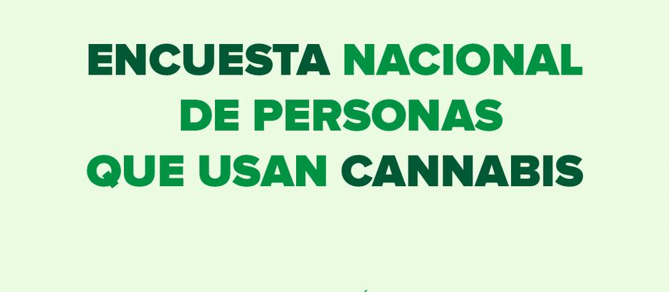 Lanzan la primera encuesta nacional de personas que utilizan cannabis en Argentina
