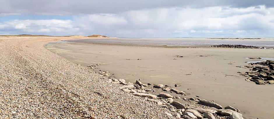 Ambiente declaró 3 sitios sensibles para aves migratorias en la Reserva Costa Atlántica