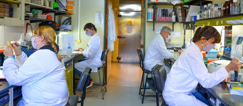 Científicxs argentinxs avanzan en una vacuna de II generación contra el COVID