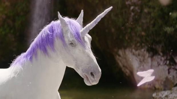 "AMF ""Unicorn"" // Bacon"