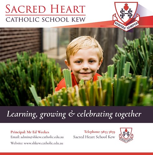 Sacred Heart Kew - Glenferrie Road Board.png