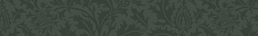 top_bar_green.jpg