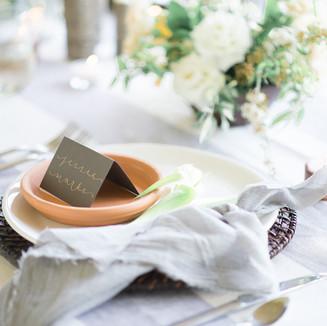 Rustic Modern Deer Ranch Wedding-7.jpg