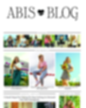abis blog.PNG