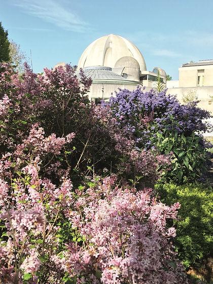 Th gardens