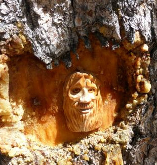wood-face.jpg