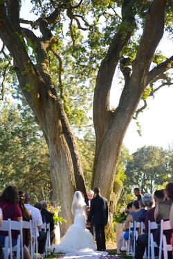 Christa & Laqwon - Wedding - 382.jpg