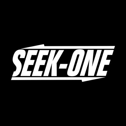 Seek-One Case Study