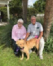 pet adoption couple dog
