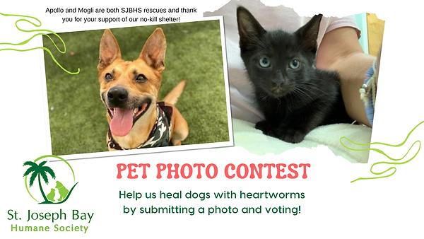 Pet Photo Contest.png