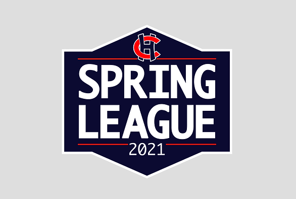 CH Spring League image.png