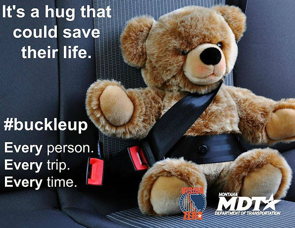 """Soft Fuzzy teady bear wearing a seatbelt.  It states, """"It's a hug that could save their life.  #buckleup Every Person. Every Trip. Every Time."""