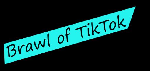 The Brawl of TikTok 2021