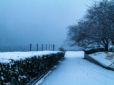Early Snowstorm Blankets Roosevelt Island