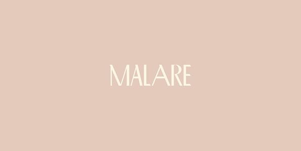 Malare Case Study