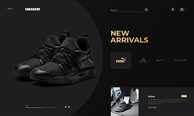 Sneakers Case Study