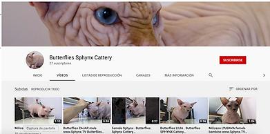 Captura de pantalla 2020-02-11 a las 1.0