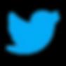 canva-blue-twitter-logo-social-media-ico