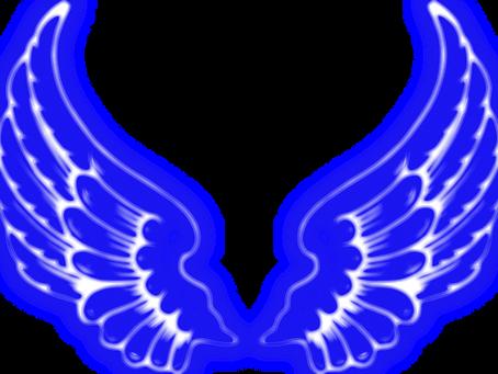 Pure Insight Angels Team