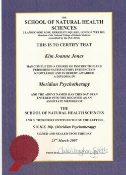 Meridian Psychotherapy.jpg