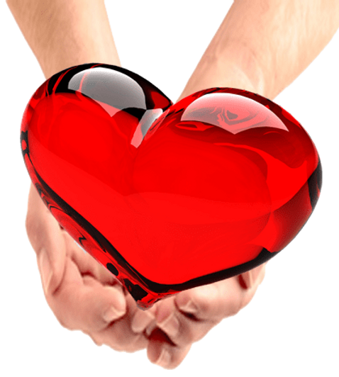 red-heart-in-hands.png