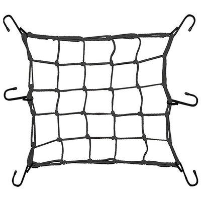 ragno-elastico.jpg