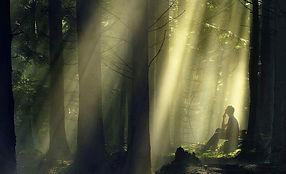 Homme pensant dans la forêt, méditation