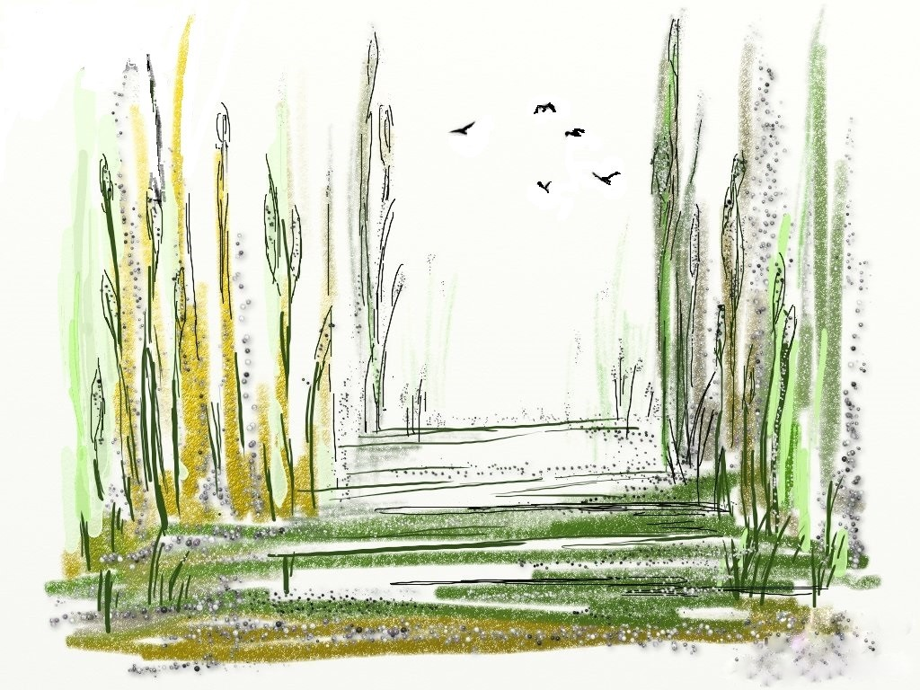 artrage bullrushes jpeg