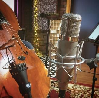 Wunder Audio cm7 Valve Microphone Cello