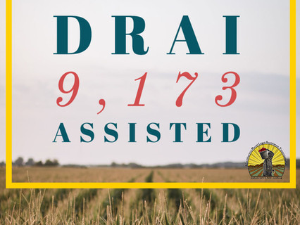Disaster Relief Assistance for Immigrants (DRAI) Project