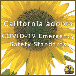 Emergency Safety COVID Standards.jpg