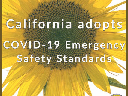 California Adopts Emergency Standards to Protect Workers from COVID-19