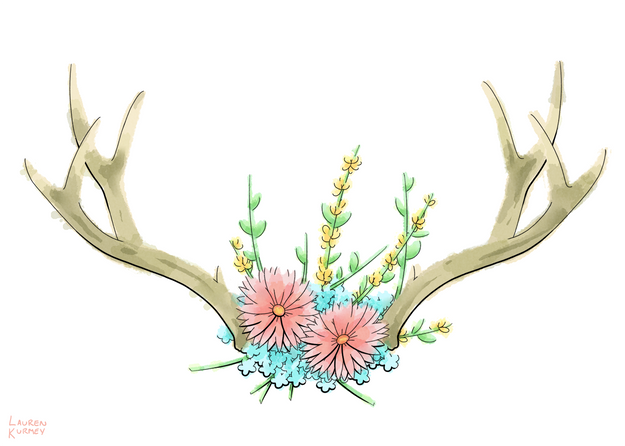 370 antlers sm.png