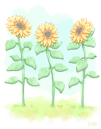 407 sunflowers sm.png