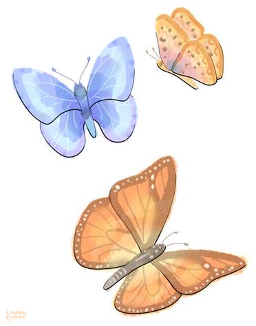 372 butterflies sm.png