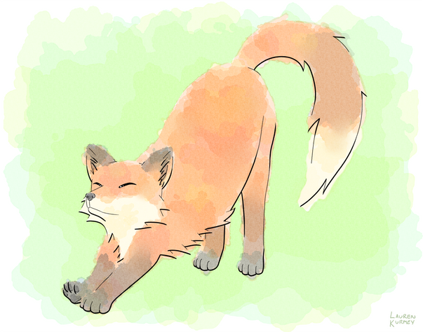 Fox sm.png