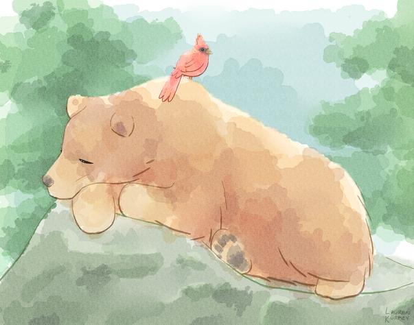 388 Bear + bird sm.png
