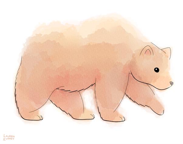 364 bear sm.png