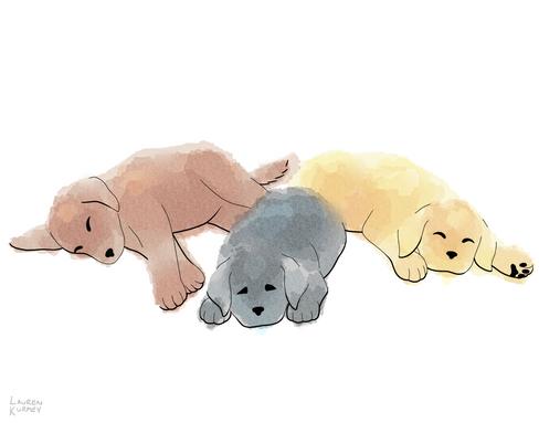 367 puppies sm.png
