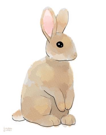 373 bunny sm.png