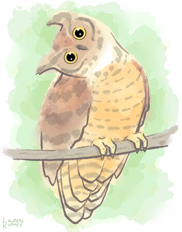 395 Owl WC sm.png