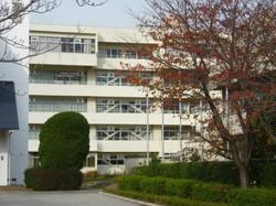 松戸国際高校