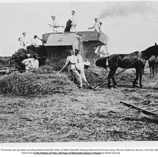 Early 1900s Threshing crew at Racyn Forestry Camp