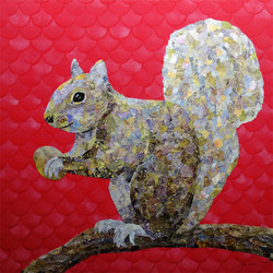 Squirrel sm