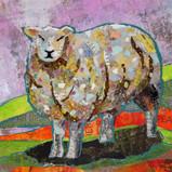 The Flock - Sheep 3 sm.jpg