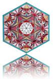Hexagon 9a.jpg