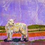 The Flock - Sheep 4 sm.jpg