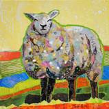 The Flock - Sheep 2 sm.jpg