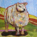 Sheep 1 sm.jpg