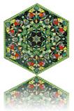 Hexagon 6a.jpg